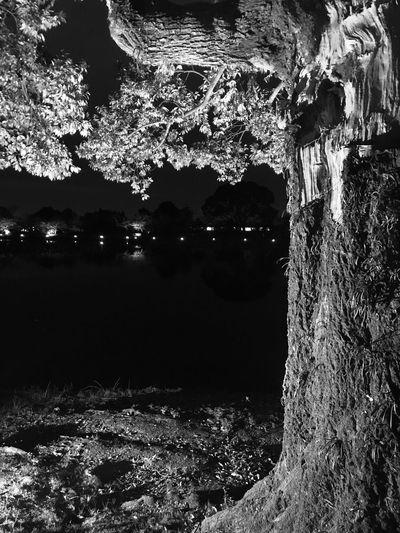 Water No People Night Nature Outdoors Architecture Illuminated