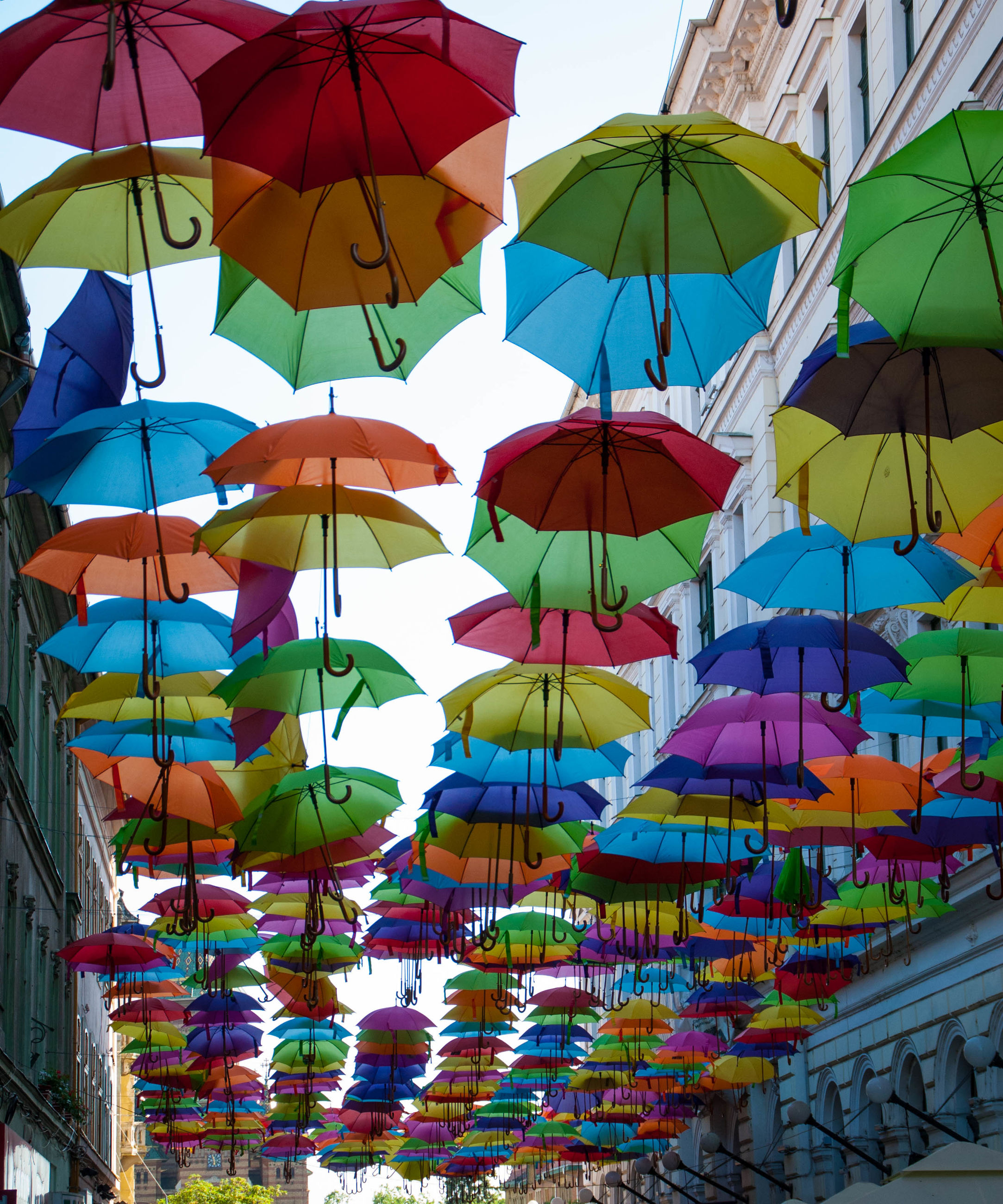multi colored, umbrella, protection, hanging, low angle view, group of objects, large group of objects, variation, abundance, arrangement, sky, colorful, decoration, open, building exterior, choice, in a row, string, outdoors, day, repetition, medium group of objects, creativity, handing, bunch, retail, cloud - sky, arranged