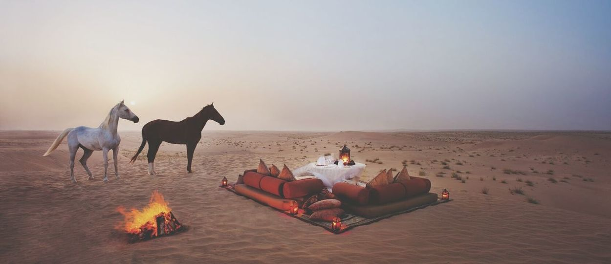 Animal Sunset Travel Desert Sand Sky Sand Dune Desert Arabic Style Lifestyles Cultures Middle East Camel Adventure Arabs People Agriculture Nature Jazirah Travel Day Beautiful Horse Riding Culture No People