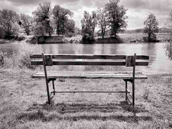 Bench Tree Nature Day Grass Outdoors Tranquility Tranquil Scene No People Park - Man Made Space Landscape Beauty In Nature Scenics Water