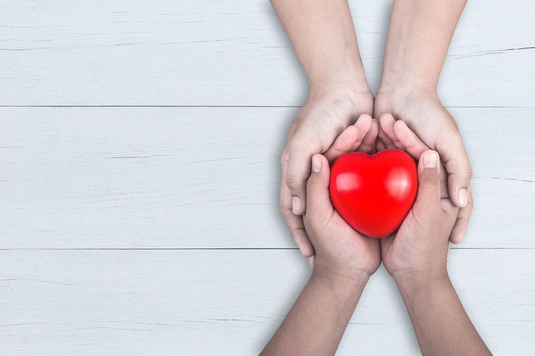 Directly above shot of woman hand holding heart