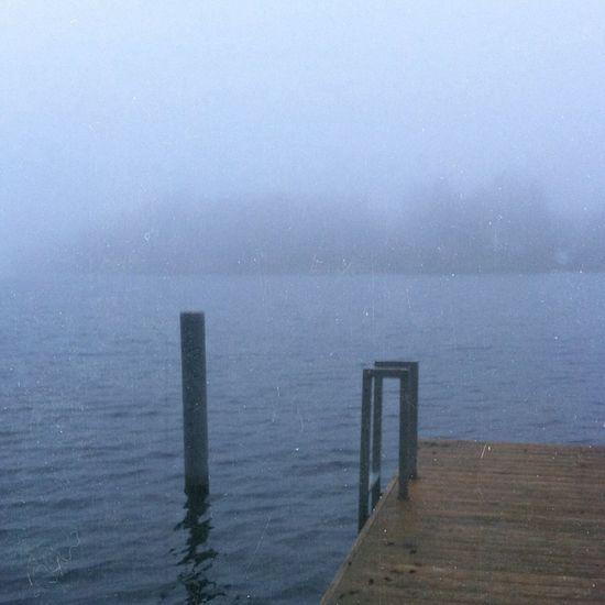 Fog Winter Followme Cold Days