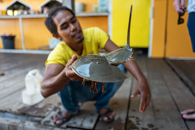 Langkawi Horseshoe Crab One Person Full Length Real People Casual Clothing Holding Males  Men Lifestyles Child Front View Young Adult Focus On Foreground Indoors  Leisure Activity Childhood Sitting Day