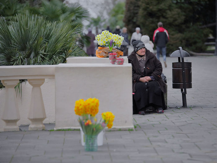 street photography Huckstress Streetphotography Street Photography Streetphoto Flowers Adult Woman Old Old Women Day Sochi Russia Stories From The City This Is Aging Adventures In The City The Street Photographer - 2018 EyeEm Awards International Women's Day 2019 Streetwise Photography The Art Of Street Photography The Street Photographer - 2019 EyeEm Awards