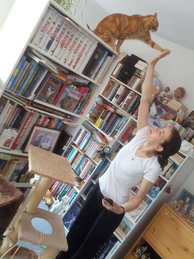 Check This Out Enjoying Life Hanging Out Cats 🐱 Cat Lovers Catoftheday Cat Katzen Catlover Girlfriend Living Room Books