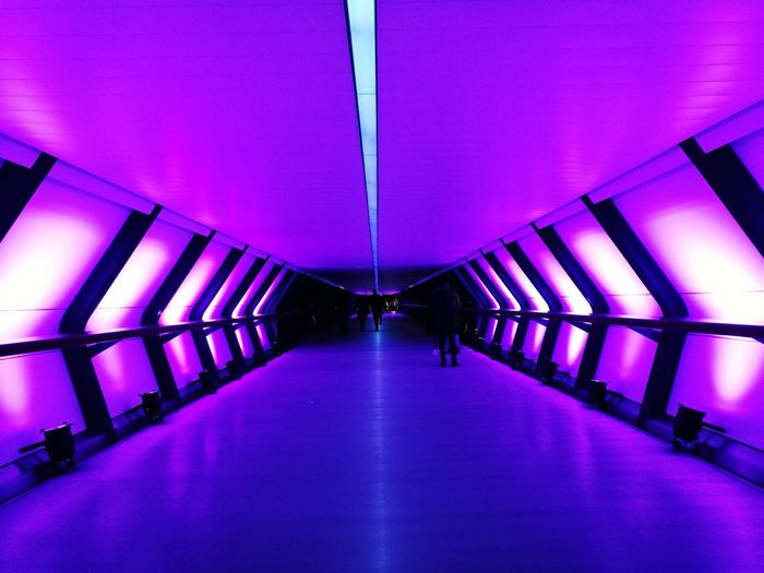 Winter Lights festival Canary Wharf Winter Light photooftheday EyeEm Best Shots photo photography bigcitylife mood Capture The Momen Deep Winter Light Photooftheday EyeEm Best Shots Photo Photography Bigcitylife Mood Canary Wharf Building #british Bridge Colors Colorful Playing Lights Tunnel Tunnel Vision Tunnel View Getty Images #london Winter Winter Lights Winter Light Architecture Built Structure Indoors  Purple Illuminated Day No People