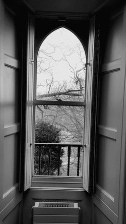 Window Indoors  Tree No People PhonePhotography Vintage View From The Window... Travel Destinations Check This Out Blackandwhite Photography Historic Day