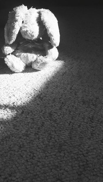 childhood memories are like Vibrant mansions huanted by Black and White ghosts. Shades Of Grey Bunny  Stuffedanimal Childhoodtoy Blackandwhite Sunlight And Shadow Shades Of Grey
