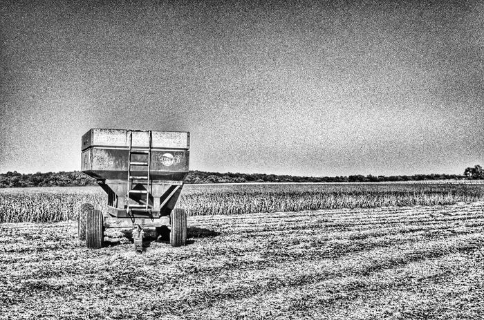 Harvesting the field Landscape_photography Monochrome Black&white EyeEm Best Shots - Black + White Harvesting The Land Harvesting Harvest Season Grain Field Grainfields Harvest Time Harvest Americana America Fields Field Blackandwhite Farm Farming Farm Life Farmland Blackandwhite Photography Lines EyeEm Gallery Nature Photography