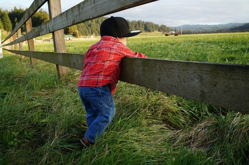 Boy Leaning At Wooden Fence On Grassy Field