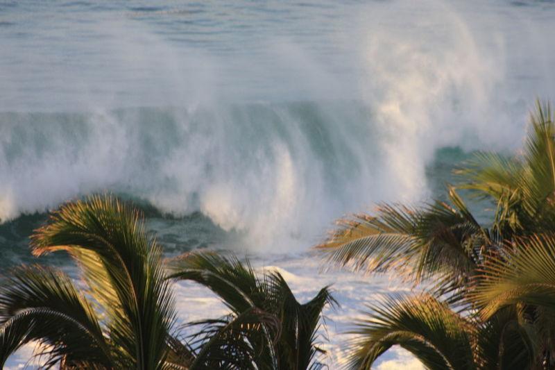 Scenic view waves crashing