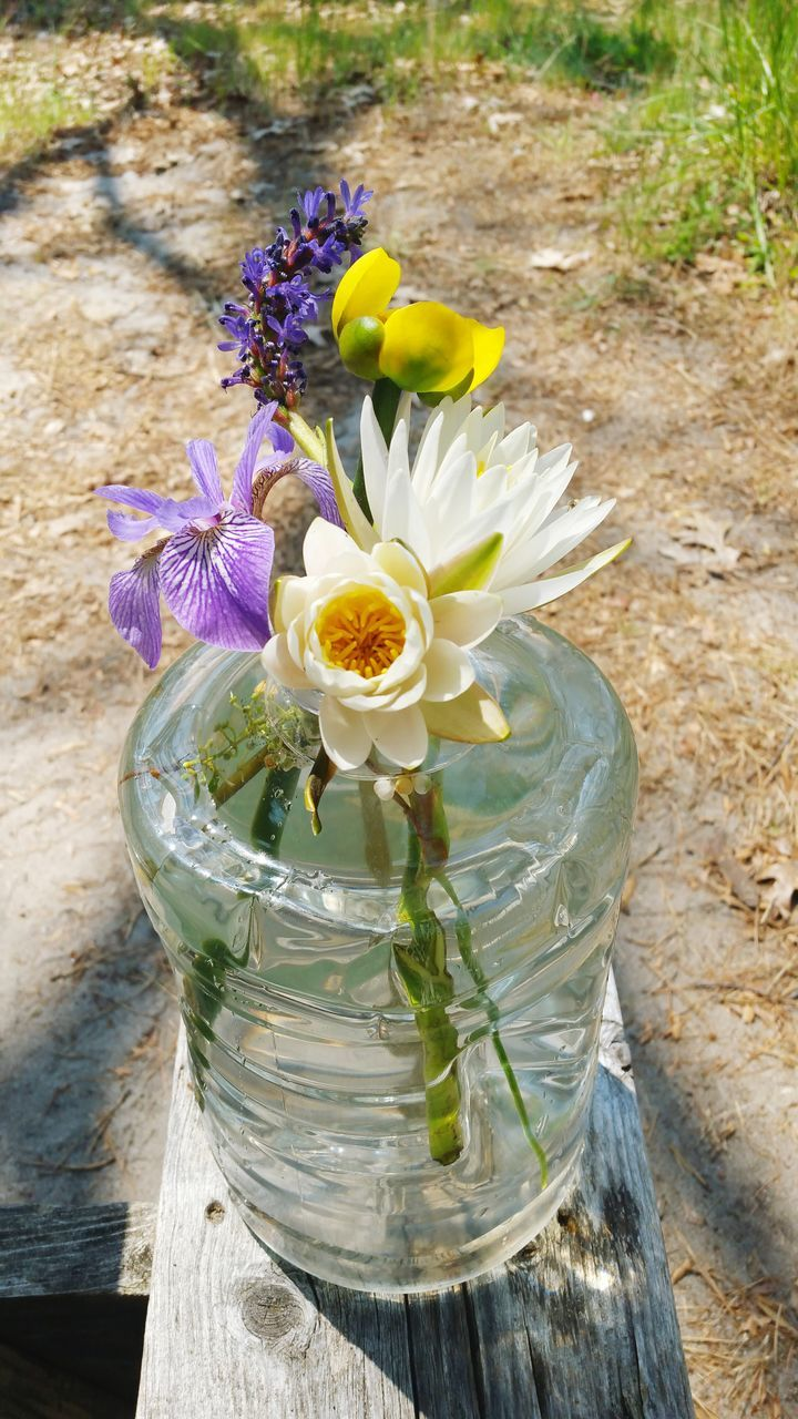 flower, freshness, high angle view, flower head, petal, nature, day, fragility, outdoors, beauty in nature, no people, table, wood - material, close-up, water, bouquet