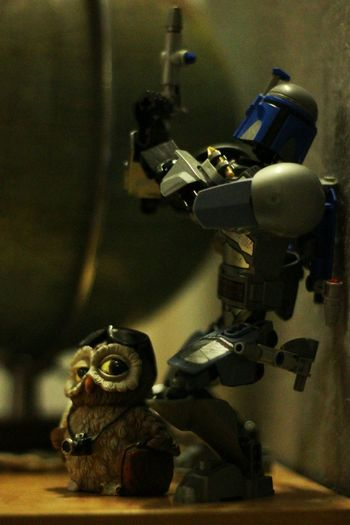 My Best PicsOur Best PicsIn Action Owle From My Point Of View 50mm F1.8 Canon550D Star Wars Legophotography Actionphotography IndoorPhotography Miniworld Minimalism Photography LEGO Taking Photos My Hometown