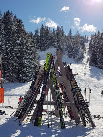 ski Ski Skiing Skies Skislope Winter Wintertime Wintersport Winterfun Snow Tree Sky Cold Temperature Cloud - Sky Day Winter Outdoors Sport Nature