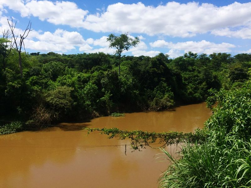 River Rio Landscape Nature Brazil Brasil Brazilian Nature Beauty In Nature Green Color Tranquility Forest Mata Atlântica Sky Tree Outdoors Brasilnature Brazilian Gallery South America Brazil Natural Beauty The Great Outdoors - 2017 EyeEm Awards