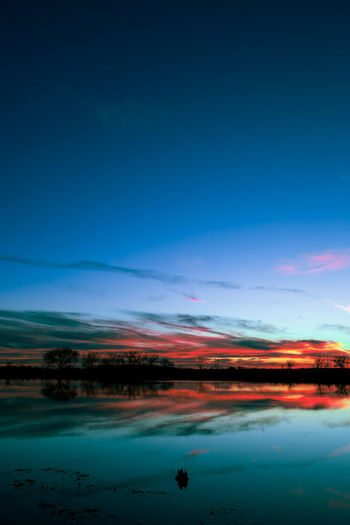 Dramatic sunset reflecting in lake with vivid tones of orange and red Dark Vertical Composition Beauty In Nature Blue Blue Sky Dramatic Sunset Colors Dramatic Susnet Sky Lake Lake Reflection Landscape Nature No People Outdoors Scenery Scenics Sky Sunset Sunset Colors Teal Color Tranquil Scene Tranquility Water Waterfront