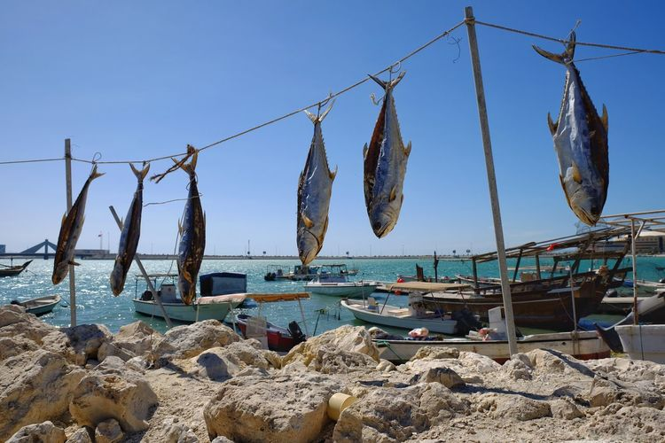 Clothes drying on beach against clear sky