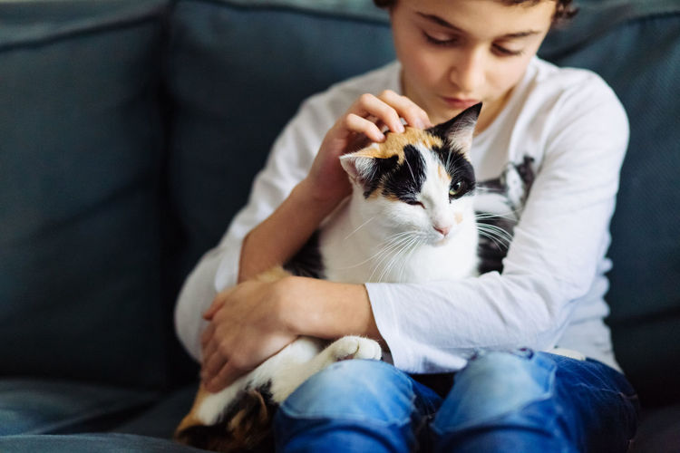 Animal Themes Cat Child Childhood Companion Day Domestic Animals Domestic Cat Friendship Holding Indoors  Mammal One Animal One Person People Pet Owner Pets Real People Sitting