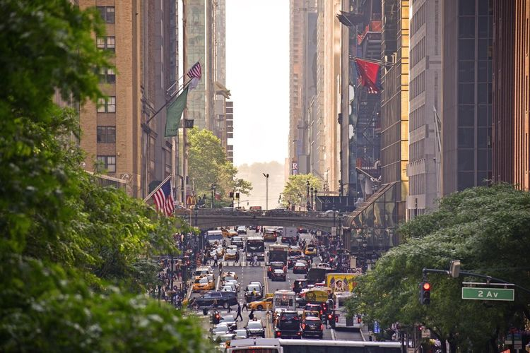 NYC Street Photography Streetphotography Tudor City Overpass Tudor City City Architecture Built Structure Building Exterior Street Plant Land Vehicle Tree Crowd Large Group Of People Mode Of Transportation