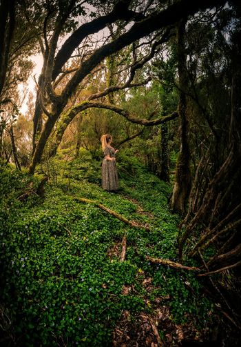 Like a Fairytale Beauty In Nature Real People EyeEm Best Shots EyeEmNewHere EyeEm Nature Lover Eye4photography  EyeEm Gallery Travel Destinations Tranquility Landscape Adventure Woman Tree Forest Full Length Childhood Grass Green Color Countryside Woods Sunrays Green Park The Traveler - 2018 EyeEm Awards The Great Outdoors - 2018 EyeEm Awards A New Beginning Capture Tomorrow