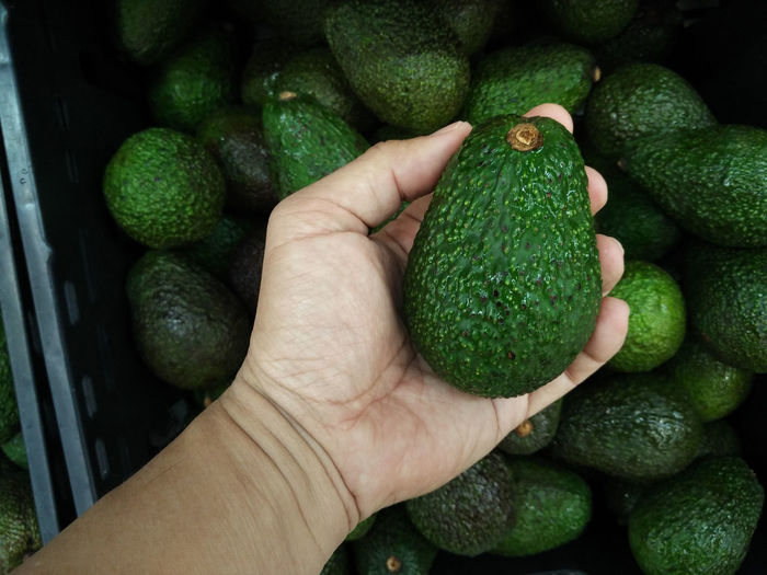 Cropped image of hand holding avocado at market