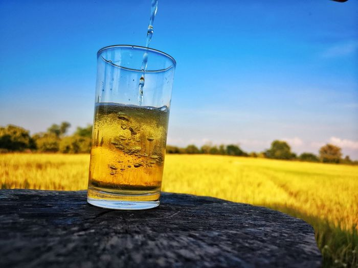 Close-up of beer glass on field against sky