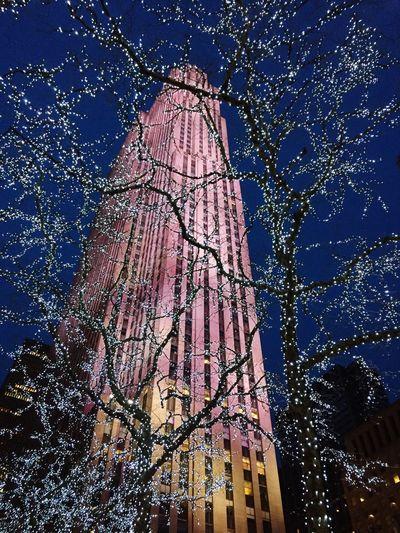 Newyork Rockfeller Center Rockfeller Fifthavenue Trees Building Lights