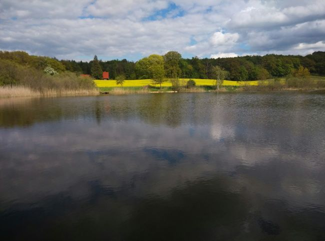 Sky And Clouds Water Reflections Water Countryside RapeFlowers Lake View Lake