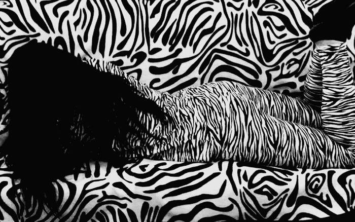 Zebra Zebra Print Zebraprint Zebra Stripes Zebra. Zebras Zebra <3 Zebra♥ Zebrahead