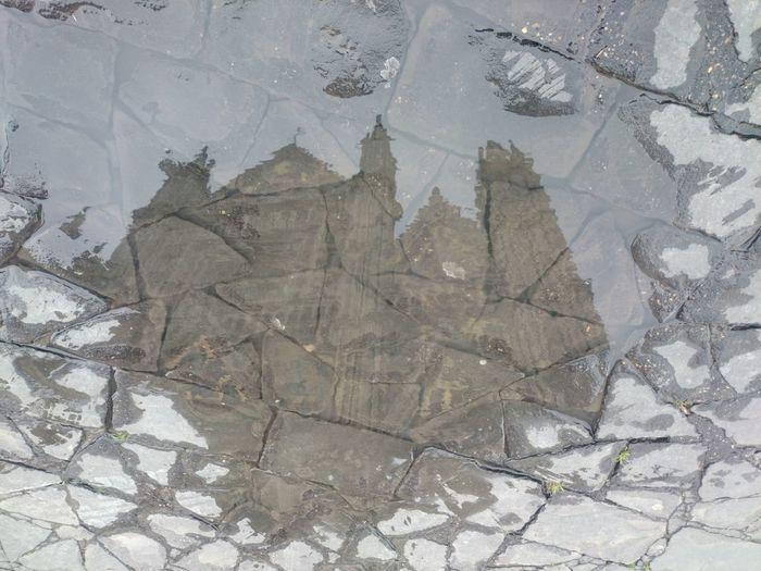 Pozzanghera Riflesso Duomo Di Orvieto Specchio Mirror Puddle Reflections