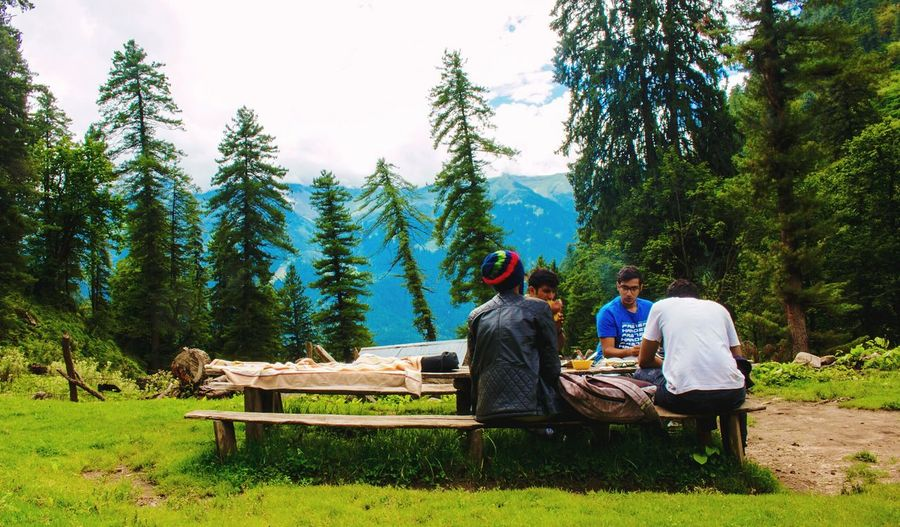 People sitting on bench against trees