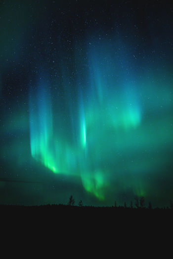 Flames of north Aurora Borealis Dark Finland Lapland Northern Lights Astronomy Backgrounds Beauty In Nature Blue Green Color Idyllic Illuminated Landscape Low Angle View Majestic Nature Night No People Photography Scenics - Nature Sky Space Star - Space Tranquil Scene Tranquility EyeEmNewHere