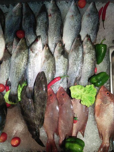 Fish Raw Restaurant Fresh Fresh Fish Sell Cook