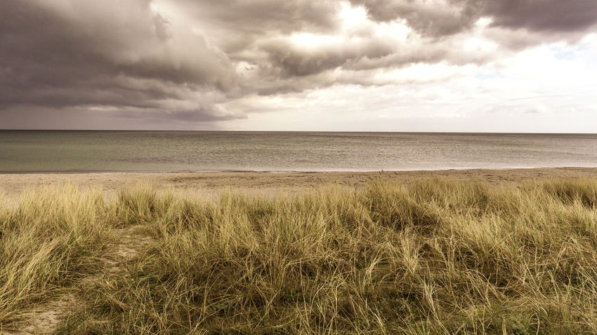 The Storm is comming ... am Strand von Marielyst in Dänemark Ostsee Sunset Stormy Weather Baltic Sea Dünenlandschaft Epic Shot Photography Wolken Beach Beauty In Nature Cloud - Sky Danmark Day Dünen Grass Growth Horizon Over Water Landscape Marram Grass Nature No People Outdoors Scenics Sea Sky Tranquil Scene Tranquility Water EyeEmNewHere