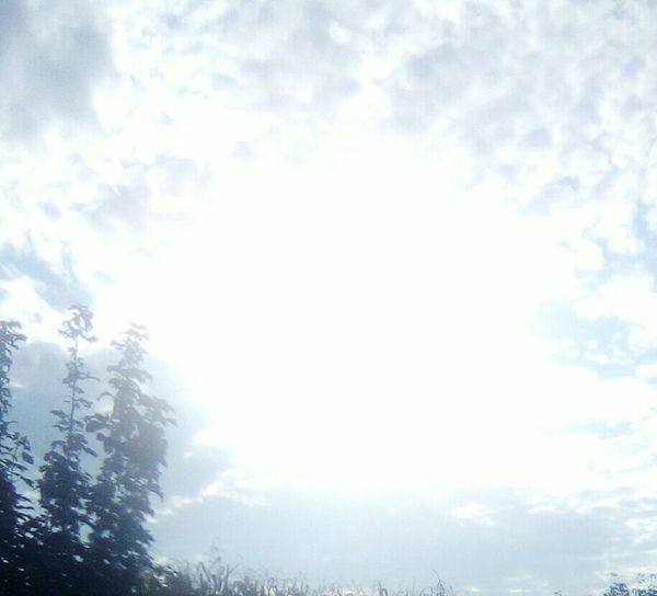 Abbagliare il sole Sole...☀ Tranquility Nature Cuore❤ Sky Tranquil Scene