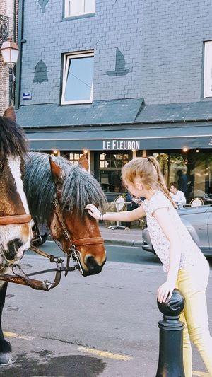 Street Photography Child Little Horse EyeEm Gallery Eye4photography  Honfleur, France