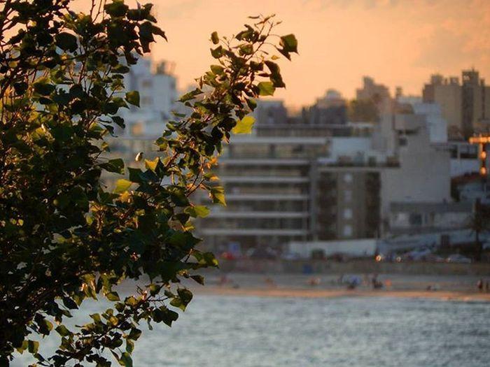 Montevideo a color Montevideo Mvd Uruguay Uruguaynatural Beach City Barriobuceo Barriosdemdeo Sunset Spring Instalike Instapic Audiovisualuruguay Uruguay_estrella Uruguay_pais