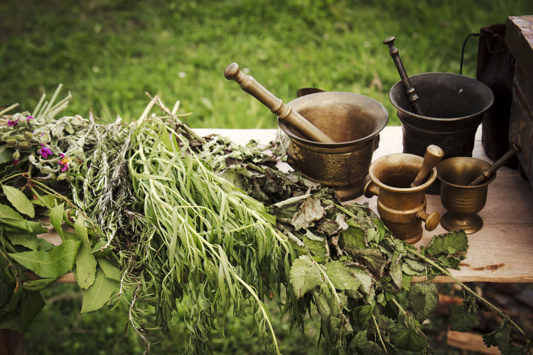 Herb Herbs Nature Potter Berry Brass Ceramic Close-up Day Freshness Grass Handmade Harvest Healthy Herbal Herbal Medicine Medieval Nature No People Outdoors Preparation  Seasoning Spice Spices Table