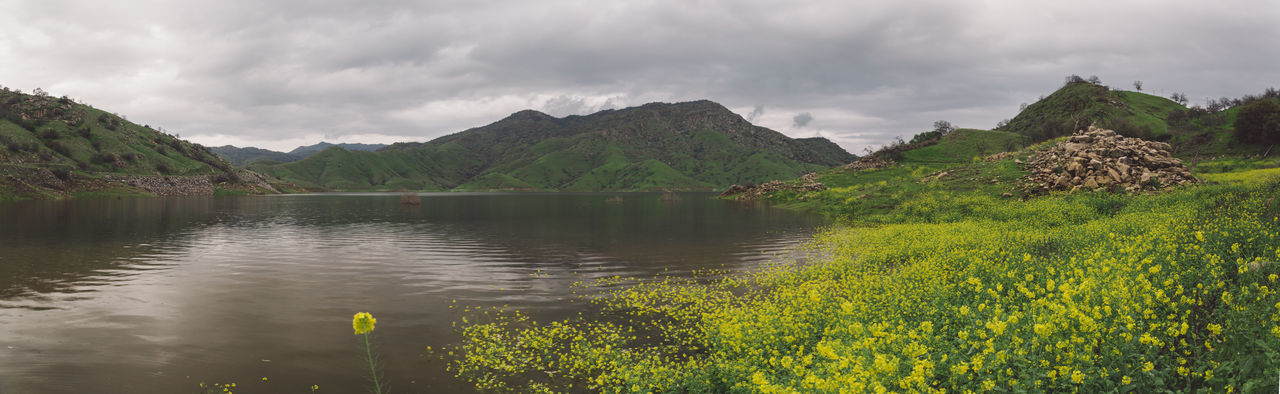 Beauty In Nature Cloud - Sky Cloudy Day Flood Flooded Flowers Lake Lake Kaweah Mountain Nature No People Outdoors Panorama Rainy Scenics Sky Tranquil Scene Tranquility Tree Water Lost In The Landscape California Dreamin
