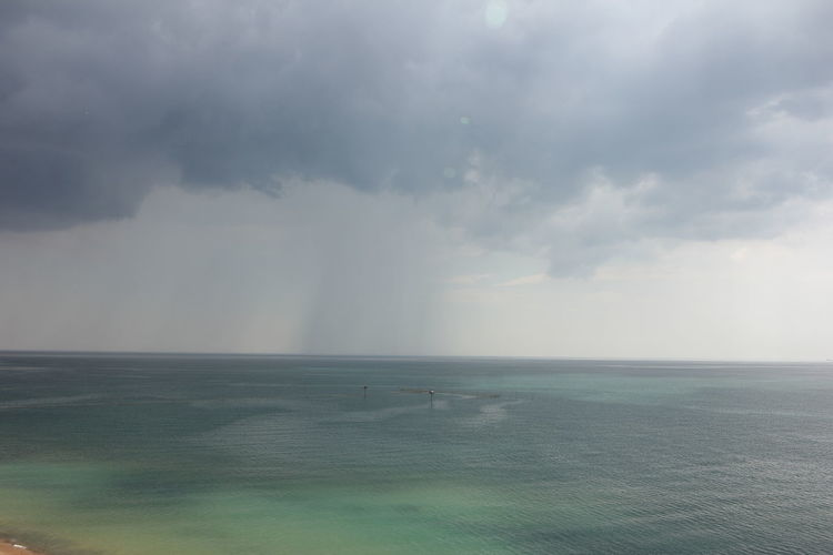 Summer thunderstorm over the sea. Cloud - Sky Sky Scenics - Nature Beauty In Nature Water Horizon Sea Horizon Over Water Tranquil Scene Nature Tranquility Non-urban Scene Animal Themes Day Animal No People One Animal Environment Outdoors Travel Summer Thunderstorm Black Sea