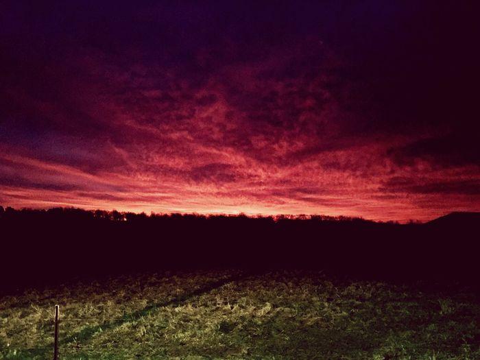Sunrise Scenics