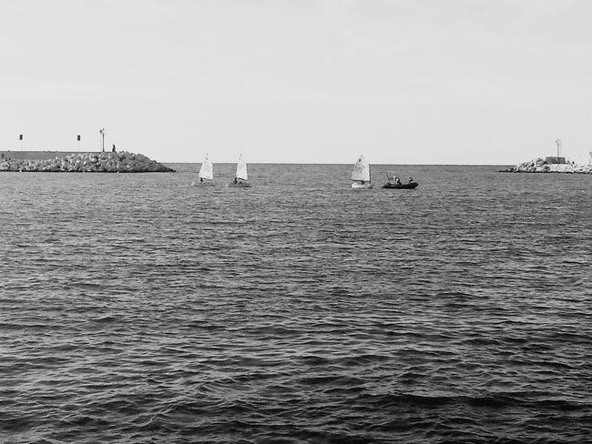 Sailing School Sailing Sailing Ship Teaching Learning Blackandwhite Black And White Black & White Blackandwhite Photography