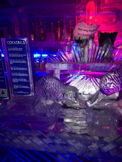 Traveling New Zealand ıce Sculptures Ice Bar Queenstown Newzealand Drink Minusdegrees Freezing Cold Freezing