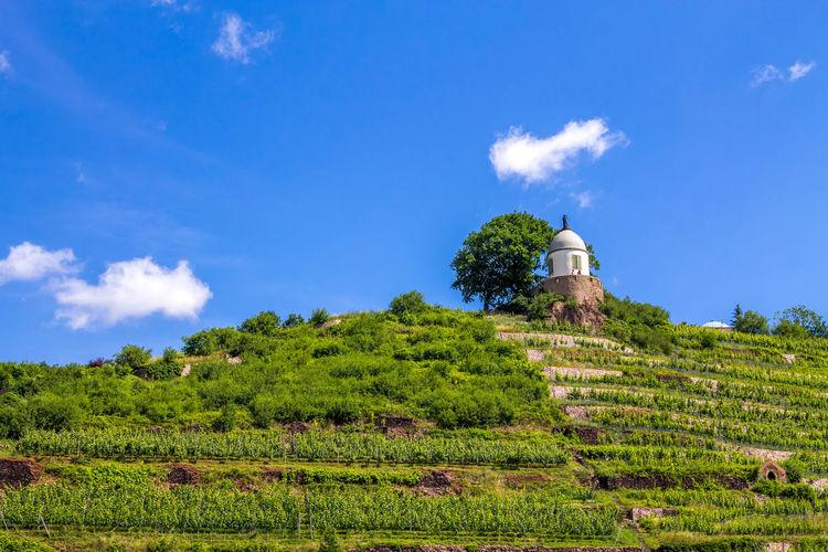 Radebeul, Wackerbarth Architecture Castle Easter Fountain Wackerbarth Germany Radebeul Region Saxony Wine