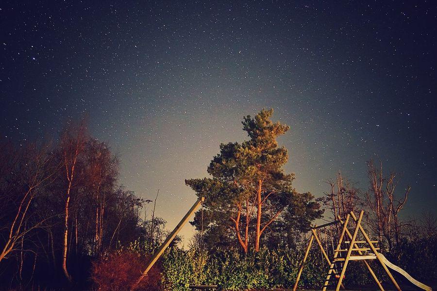 Marielyst Danmark Dänemark Night Nightphotography Long Exposure Stars Star Field Playground Trees Trees And Sky Nature Sony Sony A6000 Snapseed Snapseed Editing  Fresh On Market 2017