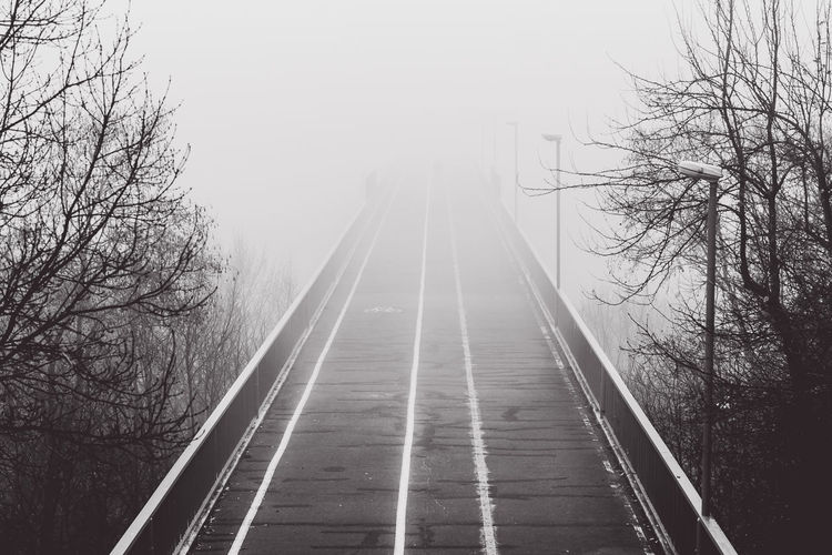 Bridge in the fog Bridge In The Fog The Way Forward Direction Transportation Tree Bare Tree Diminishing Perspective Day Plant No People Nature Connection Track Rail Transportation Railroad Track Outdoors vanishing point Clear Sky Bridge Sky Long Parallel