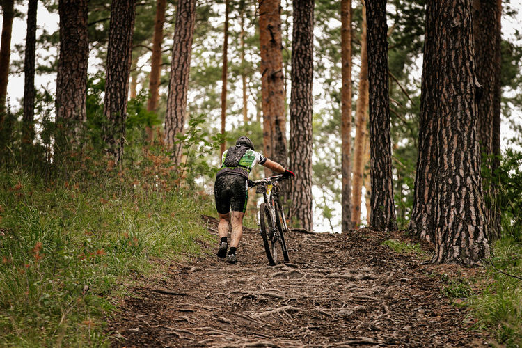 Rear view of man with bicycle in forest