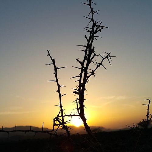 غروب_الشمس عمان Oman_photo Oman_photography Oman Landscape Sunset