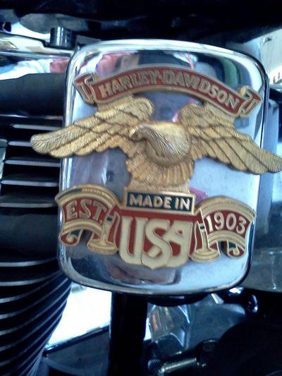 Harley Davidson Road Trip Got A Lot On My Mind