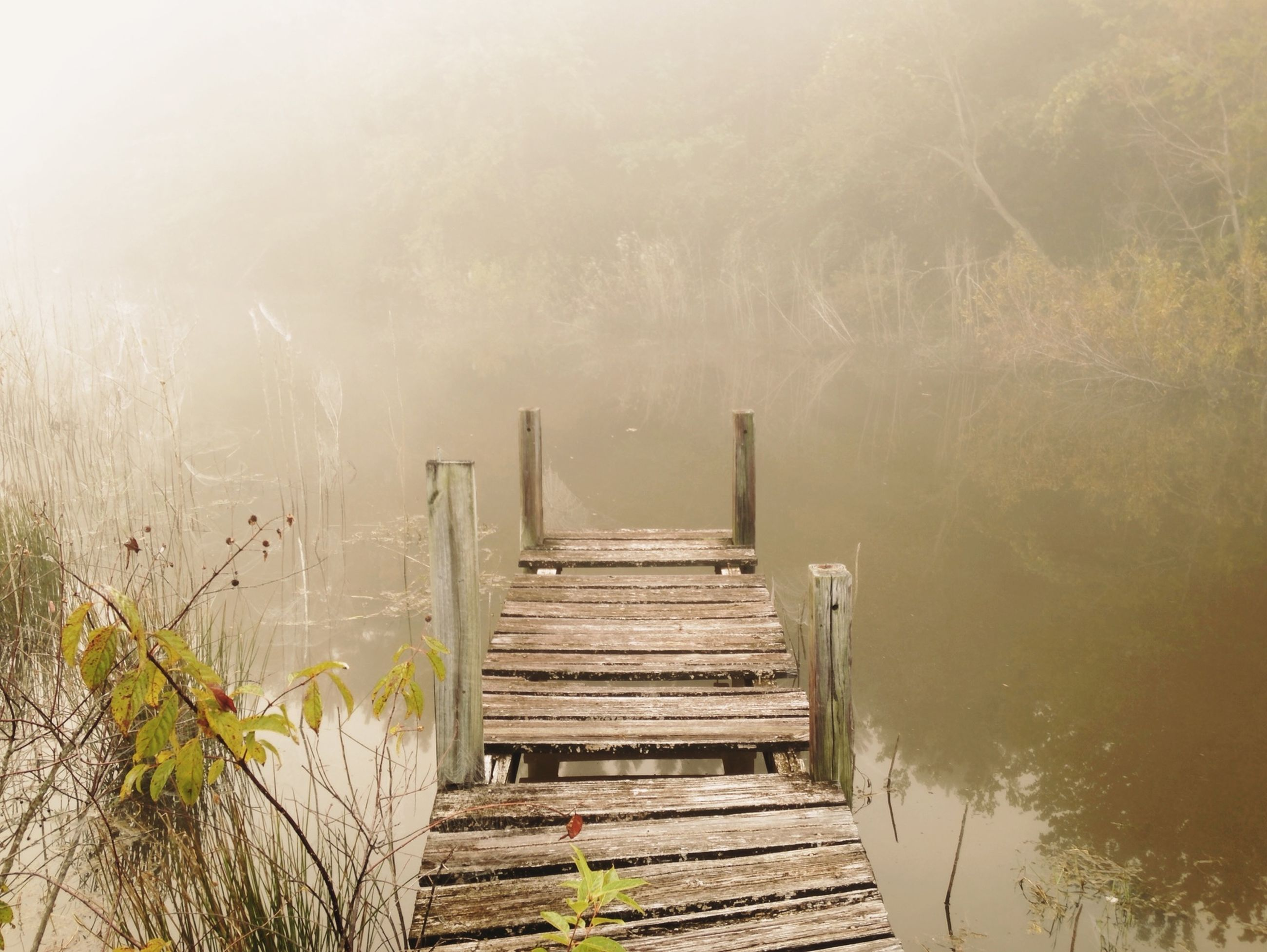 water, wood - material, pier, tranquility, lake, tranquil scene, jetty, nature, scenics, beauty in nature, the way forward, wooden, boardwalk, wood, sea, sky, idyllic, day, fog, outdoors